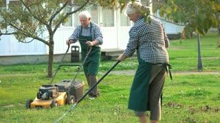 Couple of senior gardeners working. Elderly people in summer outdoor. Garden care tips.