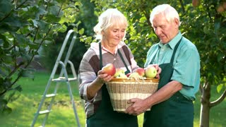 Couple with apple basket smiling. Cheerful senior people outdoor. Life, love and health.