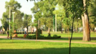 Defocused background of summer park with walking people. Crowded green park.