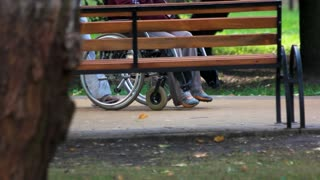 Disabled person pushing by someone behind. Someone pushing a person in a wheelchair in a park.