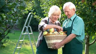 Elderly couple holding apple basket. Happy woman and man outdoors. How to grow fruits.