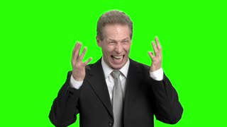 Extreme angry businessman pulling hair and screaming. Business man got nervous breakdown and pulling up tie, green hroma background.