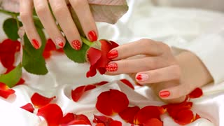 Female fingers caress bud of rose. Beautiful woman hands gently and sensual touching red rose, petals on white silk. Temptation and passion concept.