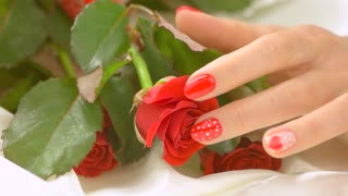 Female hands and roses, slow motion. Close up fresh red roses flowers and well-groomed hands of young woman with beautiful manicure. Feminine charm and beauty.