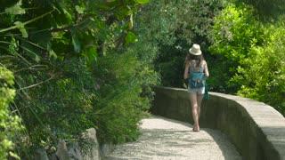 Female tourist, summer nature. Woman walking through a grove.