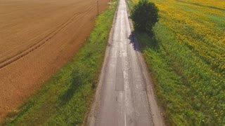 Field and asphalt road. Truck in motion. Agribusiness and transportation services.