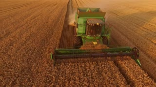 Field and combine. Agriculture and technology.