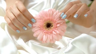 Flower and gentle touches of hand, slow motion. Young woman hand with beautiful manicure gently touching peach gerbera on white silk background. Female care and delicacy.