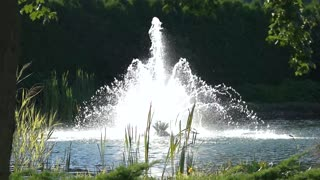 Fountain and nature, slow motion. Plants near water. Peaceful place outside the city.
