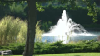 Fountain and summer nature, blurred. Blurry pond background.