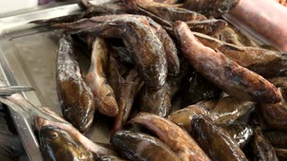 Fresh frozen gobies closeup. Frozen fish on the fish market. Sale of fish.