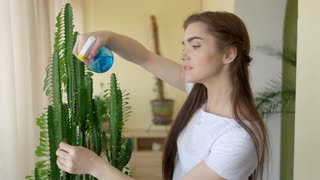 Girl spraying plant indoors. Young woman with water sprayer. How to care for houseplants.