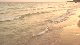 Golden seashore. Evening sunset at the sea. People swim in the sea. Beautiful landscape.