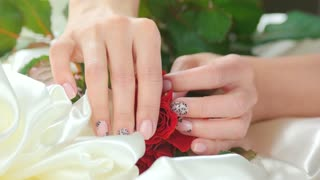 Hand caress roses on white silk. Young woman hand with beautiful gentle nail design with fresh red roses on white silk. Womanhood and sensuality concept.
