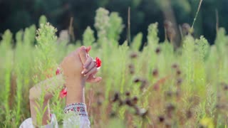 Hands of lovers. In love couple kissing in nature. Guy and a girl holding hands. Lovers enjoy each other. Passionate kiss in the field.