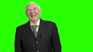 Happy old man in suit laughing hard. Laughing elderly man portrait, green screen hromakey background.