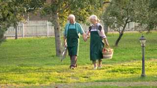 Happy senior gardeners. Couple holding hands, summer nature. Jobs for seniors.
