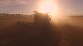Harvester moving through dust. Field and bright sun. Combine cuts ears. Barley and wheat.