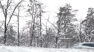 Highway through the forest. Winter forest. Cars travel in the winter woods. Forest in snow. Traffic in the winter. Vehicles in winter.
