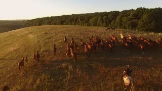 Horse herd is running. Aerial view of horserider. Boundlessness of freedom. Strength is unstoppable.