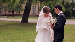Just married gentle kiss bride and groom.