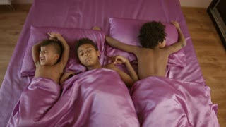 Kids in bed. Three mulatto boys. Early in the morning. Time to get up.