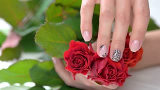 Ladies gentle hand caress red roses. Female beautiful hand with fresh manicure touching red aroma roses close up. Women care and beauty.