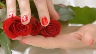 Manicured hand gently caress red roses. Young woman hands with fashion romantic design touching roses with tenderness and sensuality. Womanhood and temptation.