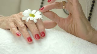 Manicured hands and gentle chrysanthemum. Old woman hands with red manicure on white towel in spa salon touching white little flower on her hand. Skin love and care.
