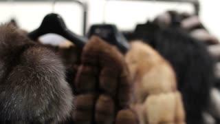 Mink coats hanging in the shop window. Shop mink coats. Chinchilla coats. Sable coats. Sales of fur coats. Winter season. Collection of fur coats.