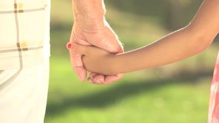 Old man and kid holding hands together. Grandpa and granddaughter detached hands holding together, summer nature background.