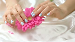 Pink gerbera flower and manicured hands. Young woman hands with perfect winter manicure touching gentle flower on white silk background.