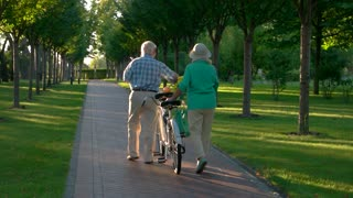Senior couple walking with bicycle. People in the park. Our road through life. Find place under the sun.