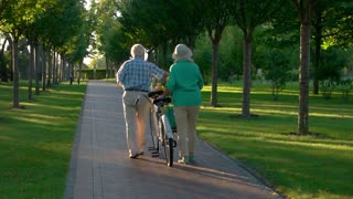 Senior couple walking with bike. People in park alley. Together through life. Leave all bad behind.