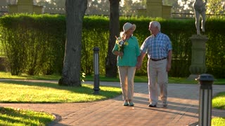 Senior couple walks in slow-mo. People hold hands. Live and learn to love. See life in best colors.