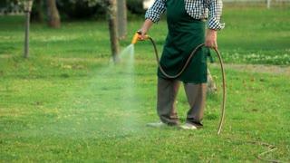 Senior man holding water hose. Gardener walking on grass. Lawn care tips.
