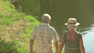 Seniors walking near water, back view. Old man and woman holding hands on beautiful nature background.