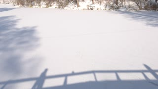 Shadows of couple on snow. Silhouettes of people, winter. Love keeps us warm.