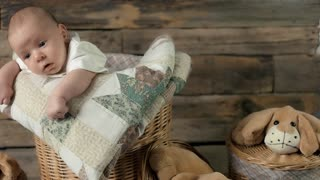 Small child, soft toy dogs. Basket and caucasian baby.