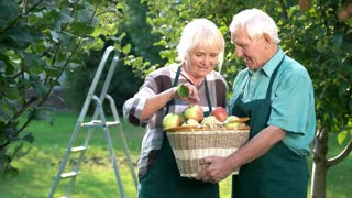 Smiling couple of gardeners. People kissing apple. Treasure of nature.