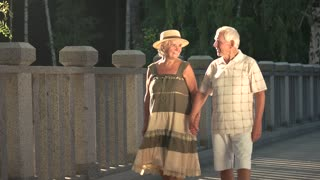 Smiling couple of seniors outdoors. Old man and woman holding hands and walking on bridge. Loyalty and romance in relationship between elderly people.