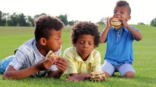 Three mulatto boys are tasting hamburgers on the sunny glade.