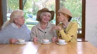 Three senior women at table. Old ladies in cafe talking. Conversation of good friends.