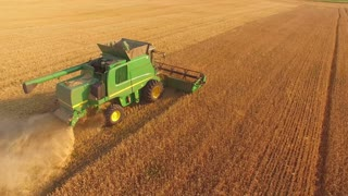 Top view of moving combine. Agricultural machine gathers grain. Field of rye. Business on selling crops.