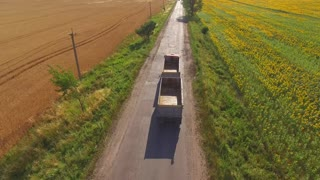 Truck near field. Nature and asphalt road. Basics of commercial farming.