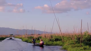 Vegetable garden on the water. Agriculture on the lake. People float on a fishing boat. Inle Lake.