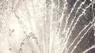 Water streams slow motion. Sunlight and fountain. Art of nature.