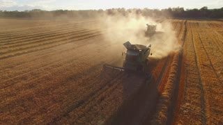 Wheat field and combine harvesters. Machinery gathering crops. How to develop farm business.
