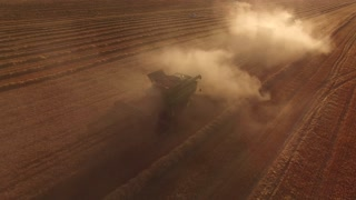 Wheat field, combines and dust. Machines gathering wheat crop.