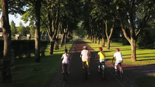 Young cyclists riding a bikes, back view. Four friends cycling on the park road, drone view. Summer tourism concept.